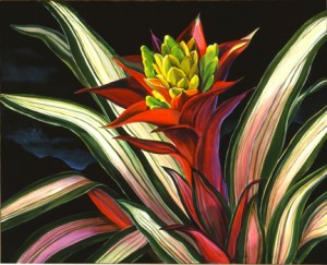 NIGHT bromeliad-11X13WEB